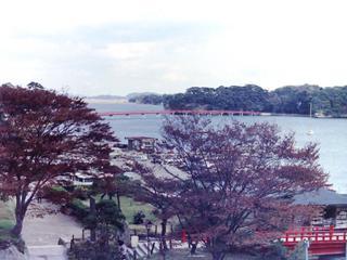修学旅行 東北コース 松島